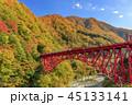 黒部峡谷 トロッコ鉄道 45133141