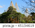 兼六園(雪つり) 45134619