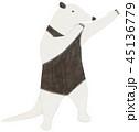 動物 哺乳類 挿し絵のイラスト 45136779
