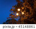 公園 あき 街の写真 45148861