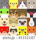 いろいろなペットの顔セット 45152187