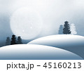 林 森 樹林のイラスト 45160213