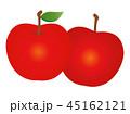 りんご 林檎 フルーツのイラスト 45162121