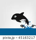 くじら クジラ 鯨のイラスト 45163217