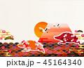 亥 亥年 富士山のイラスト 45164340