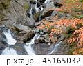 鯉ヶ滝と紅葉 45165032