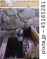 大垣の自噴水・曽根華渓寺の福水 45165281