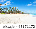 ビーチ 海 ヤシの写真 45171172