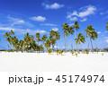 インド洋のリゾートイメージ 45174974