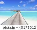 インド洋の美しいサンゴ礁の海 45175012