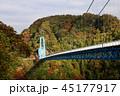 秋 紅葉 竜神大吊橋の写真 45177917