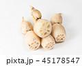 レンコン 野菜 根菜の写真 45178547