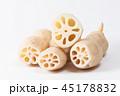 レンコン 野菜 根菜の写真 45178832