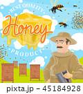 養蜂 養蜂所 ハチのイラスト 45184928