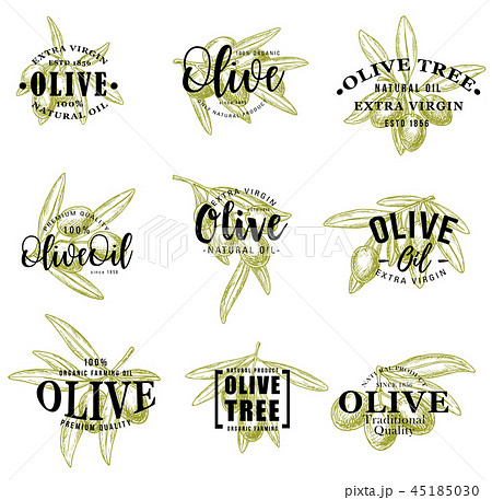 Olive oil and branches icons, vector lettering 45185030