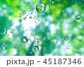 新緑と雨粒 45187346
