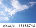 青空と鳥 45188748