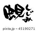 しじみ 蜆 筆文字のイラスト 45190271