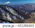 富士山 冬 雪山の写真 45190403