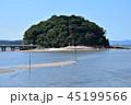 夏の竹島 45199566