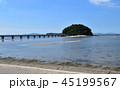 夏の竹島 45199567