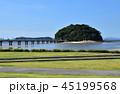 夏の竹島 45199568