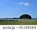 夏の竹島 45199569