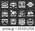 サッカー フットボール 蹴球のイラスト 45201256