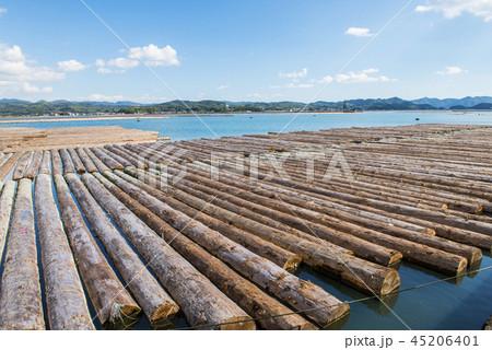 輸入される材木 45206401