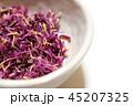 食用菊のおひたし 45207325