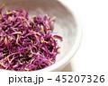 食用菊のおひたし 45207326