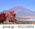 富士山 山 世界文化遺産の写真 45213854