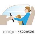 危険な運転. ペットを抱きながら運転. 45220526