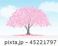 桜 風景 満開のイラスト 45221797