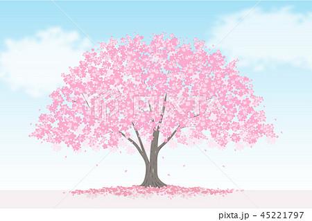 満開の桜の木 風景のイラスト素材 45221797 Pixta