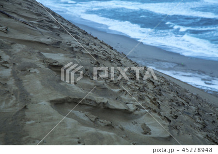鳥取砂丘の冬 45228948