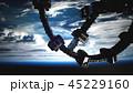 地球 軌道 シャトルのイラスト 45229160