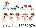 ペット 愛玩動物 わんこのイラスト 45230979