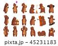 くま クマ 熊のイラスト 45231183