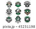 ベースボール 白球 野球のイラスト 45231198