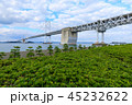瀬戸大橋 45232622