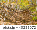 秋 紅葉 山の写真 45235072