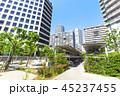 マンション 高層マンション 集合住宅の写真 45237455