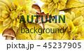 秋 水彩画 あきのイラスト 45237905