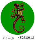 Image of an abstract lizard on a green background 45238918