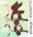 群れ ハゲワシ 禿鷲のイラスト 45240773