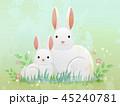 うさぎ ウサギ 兎のイラスト 45240781