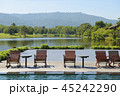 Landscape view of swimming pool and chairs with mo 45242290