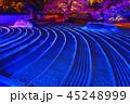 ライトアップ 寺院 萬松山の写真 45248999