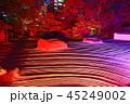 ライトアップ 寺院 萬松山の写真 45249002